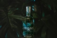 OHANA | Dry Gin | Titelbild